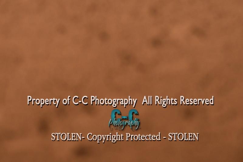 CCC_8065