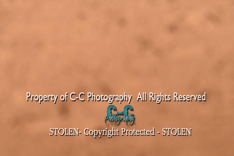 CCC_8064
