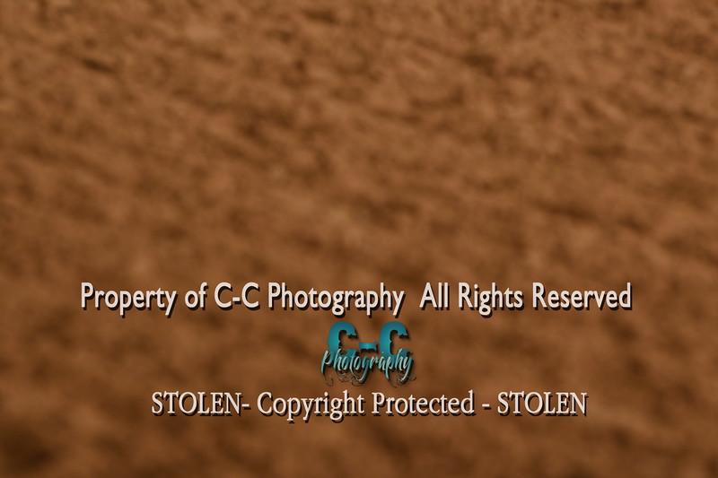 CCC_2079