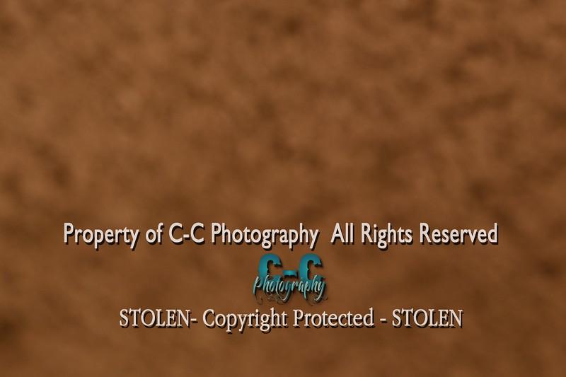 CCC_0009