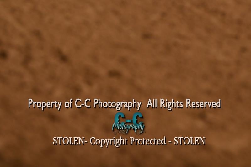 CCC_0808