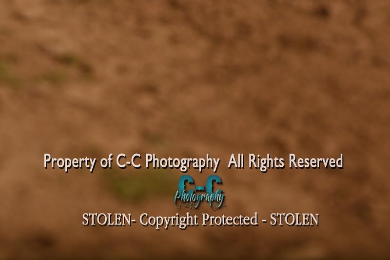 CCC_0823