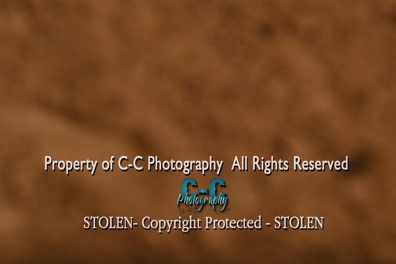 CCC_1543