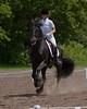 Taylor-Loek-Stockade-20090628_0284-
