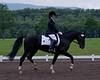 Sarah-Merlin-Stockade-20090628_0020-