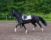 Sarah-Merlin-Stockade-20090628_0001-