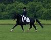 Sarah-Merlin-Stockade-20090628_0008-