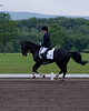Sarah-Merlin-Stockade-20090628_0026-