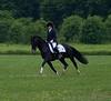 Sarah-Merlin-Stockade-20090628_0004-