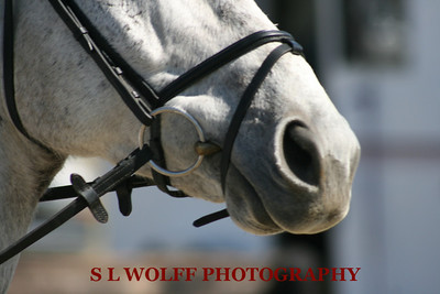 2012-03-10-FG-Other-3475