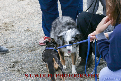 2016-05-08-MEADOWS-CANDID-0870