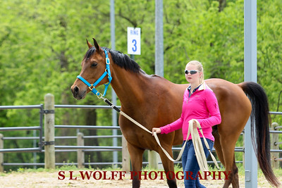 2016-05-08-MEADOWS-CANDID-1546
