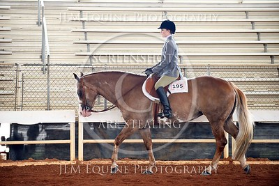 NGPHC 715 - Am. Walk Trot Hunter Under Saddle