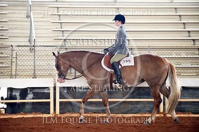 NGPHC 715 - Am. Walk Trot Hunter Under Saddle