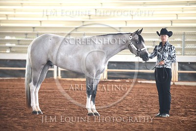NGPHC 715 - Geldings Grand and Reserve