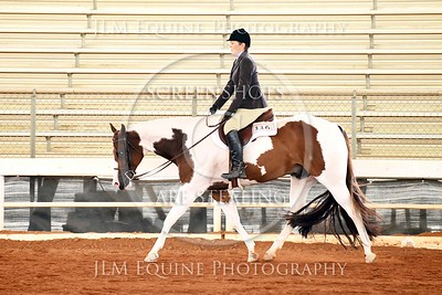 NGPHC 715 - Novice Am. Hunter Under Saddle