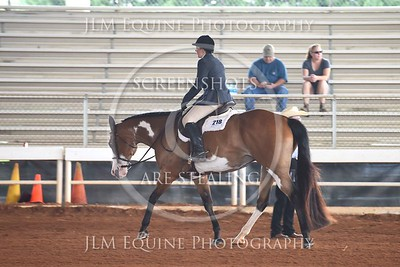 NGPHC 715 - Walk Trot Hunter Under Saddle