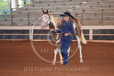 NGPHC 715 - Yearling Stallions