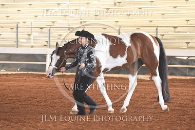 NGPHC 715 - Youth Geldings (18 & Under)