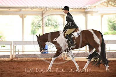 NGPHC 715 -  Youth Hunter Under Saddle (18 & Under)