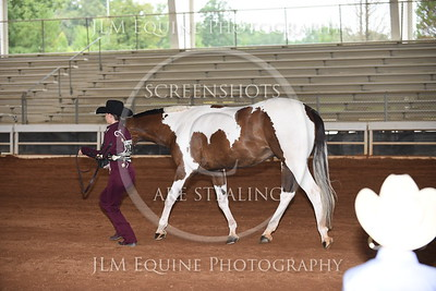 NGPHC 715 - Youth Showmanship