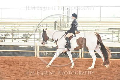 46 Novice Youth Hunter Under Saddle