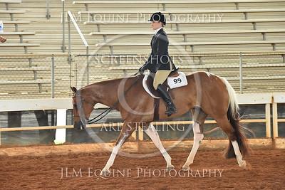 52 Novice Amateur Hunter Under Saddle