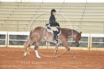53 Amt. Hunter Under Saddle