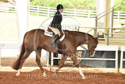 54 / 48 JR & SR Hunter Under Saddle