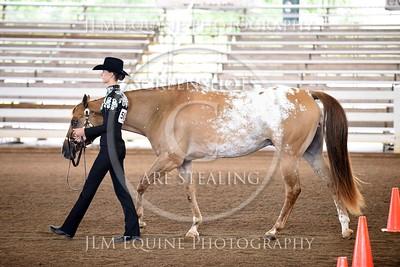 GQHA August 22 2015 - 501 Carly Headrick
