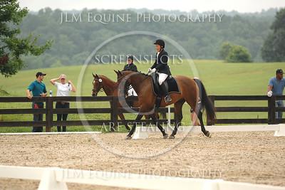 GHF - July 2014 #478 Lynn Marks