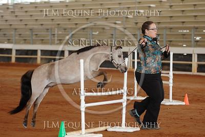 PSMHC June 2015 - #020 Brooke Schmueckle