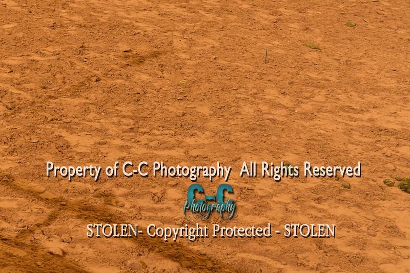CCC_8826