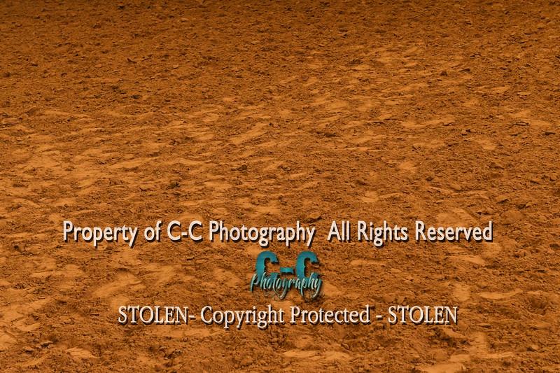 CCC_9349