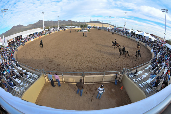 Scottsdale 2011-8638