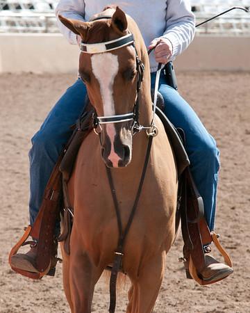 Scottsdale 2011-8351