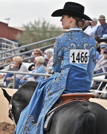 Scottsdale 2011-8479 copy