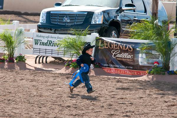 Scottsdale 2011-8314