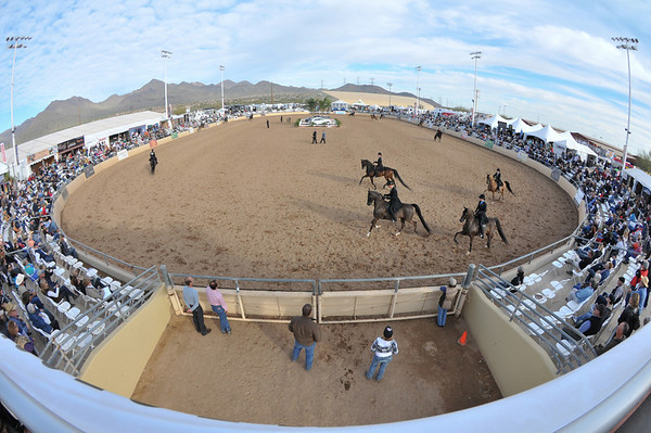 Scottsdale 2011-8639