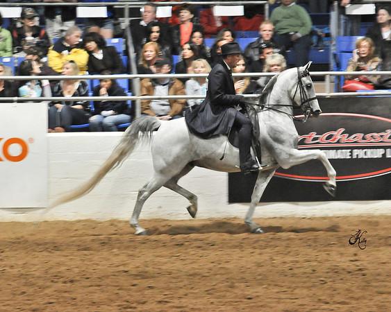 Scottsdale 2011-8776 copy