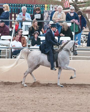 Scottsdale 2011-8621