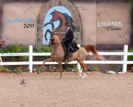 Scottsdale 2011-8586 copy
