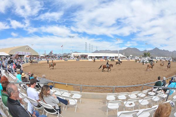 Scottsdale 2011-8430
