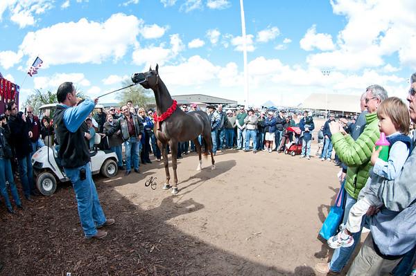 Scottsdale 2011-0799 copy
