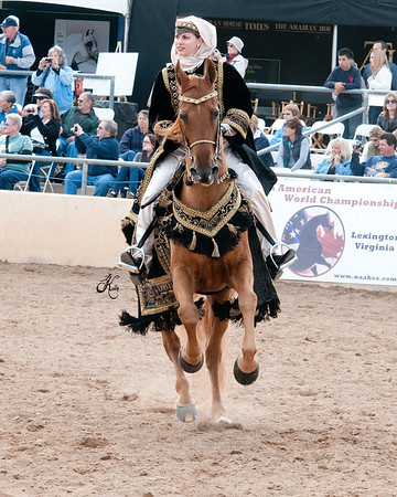 Scottsdale 2011-8547 copy