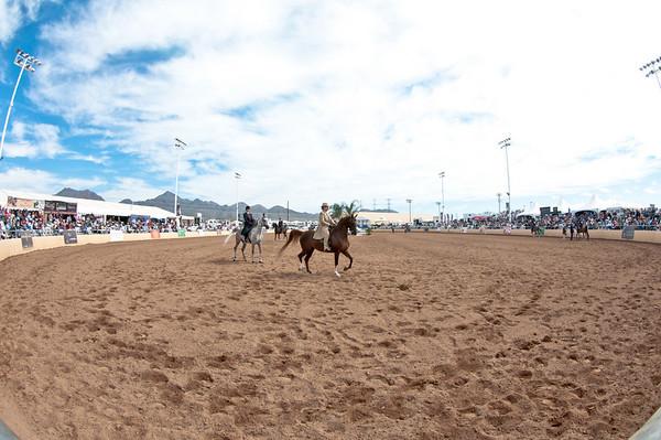 Scottsdale 2011-8413 copy