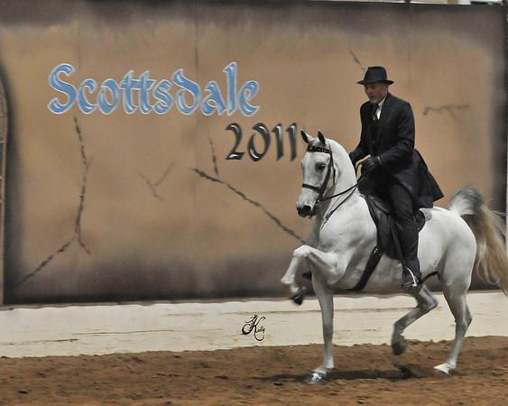 Scottsdale 2011-8718 copy