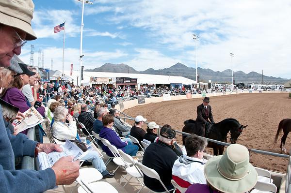 Scottsdale 2011-8406