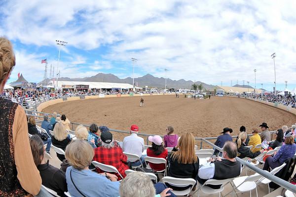 Scottsdale 2011-8426