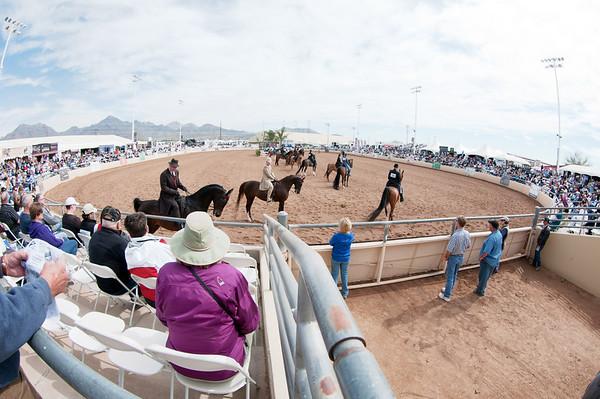Scottsdale 2011-8408